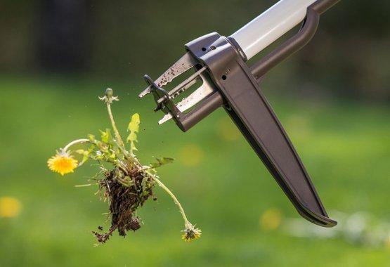 Скоростно премахване на плевелите